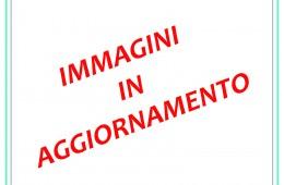 Sala Consigliare della Provincia di Asti – Asti (AT)